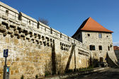 Old bastion — Stockfoto