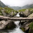 Beautiful wild landscape with waterfall — Stock Photo