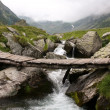 Beautiful wild landscape with waterfall — Stock fotografie