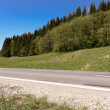Rural scene near Brasov city with road and green forest — Stock Photo