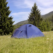 Tent in camping area with mountain landscape in background — ストック写真