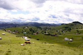 Top of mountains in Sirnea village from Brasov County — Stock Photo