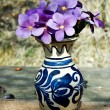 Flower in ceramic pot — Foto de Stock