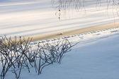在雪地里冻的湖 — 图库照片