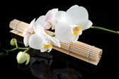 White orchid and bamboo mate — Stock Photo