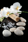White orchid and stones — Stock Photo