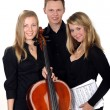 Young classic music trio — Stock Photo