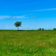 Wind turbine landscape on Brnholm islad — Stock Photo