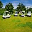 Four eco transporters on golf course — Stock Photo
