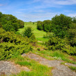 Royalty-Free Stock Photo: Golf course on hill with rocks