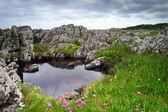 Rocks on Bornholm island, Baltic sea — Stock Photo