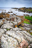 Rocks on Bornholm island, Baltic sea — Stockfoto