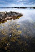 Skály na ostrově bornholm, Baltské moře — Stock fotografie