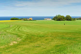 Golf course on Bornholm island — Stock Photo