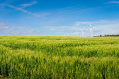 Wind turbine on Bornholm island — Stock Photo