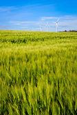 Bornholm adada rüzgar türbini — Stok fotoğraf