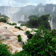 Iguazu waterfalls in Brazil — Stock Photo