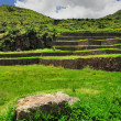 Stock Photo: Teracces in ancient city in Peru