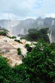 Cascate di iguazu in brasile — Foto Stock