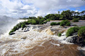 Iguazu river and waterfalls — Stock Photo