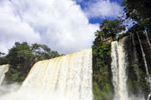 Iguazu waterfalls in Argentina — Stock Photo
