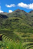 Hillside terraces in Peru — Stock Photo