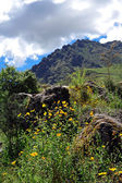 Montagne peruviane lanndscape — Foto Stock