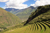 Hillside terraces near Cuzco — Stock Photo