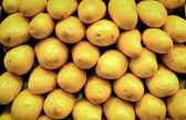Potatoes vegatable food patter in market — Stock Photo
