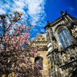 Stock Photo: Aachen Cathedral