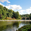 River Wear — Stock Photo #4167934