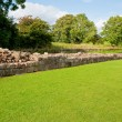 Stock Photo: Hadrian's wall