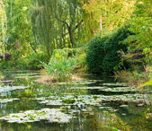 Monet's garden and lily pond — Stock Photo