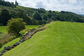 Vindolanda field — Stock Photo