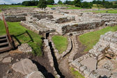 Vindolanda ruins — Stock Photo