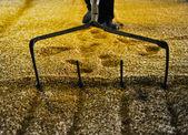 Kratta mältat korn — Stockfoto