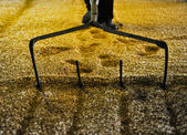 Raking malted barley — Stock Photo