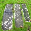 Stock Photo: Kildalton burial slabs