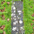 Stock Photo: Kildalton burial slab
