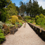 Armadale castle garden — Stock Photo #4238378