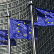Stock Photo: Europeflags
