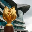 Stock Photo: Golden BauhiniSculpture at Golden BauhiniSquare of Hong Kong Conven