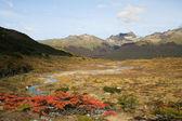 Tierra Del Fuego — Stock Photo