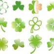 Clover or shamrock  for St Patrick's day — Stock Vector