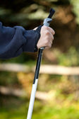 Hand mit Nordic Walking Stock — Stock Photo