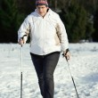 Stock Photo: Nordic Walking in the snow