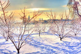 Beautiful winter landscape with crystal trees, shiny snow and ma — Stock Photo