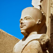 The statue of Amun Re in Luxor - Stock Photo