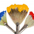 Primary Colors on fan brushes — Stock Photo