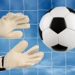 Soccer goalie - Stockfoto
